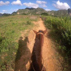 Galena horseback riding