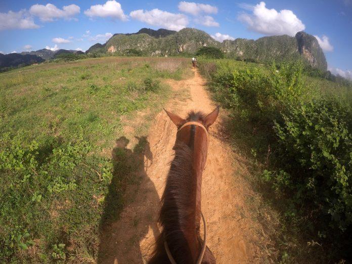 Galena horseback riding