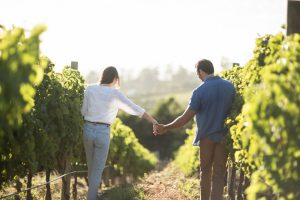 galena, il, wineries